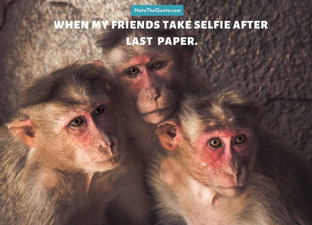 when my friends take selfie after last paper.