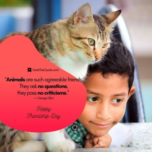 Happy Friendship Day-Quotes-Animals are such agreeable friends, They ask no questions-NoteTheQuote