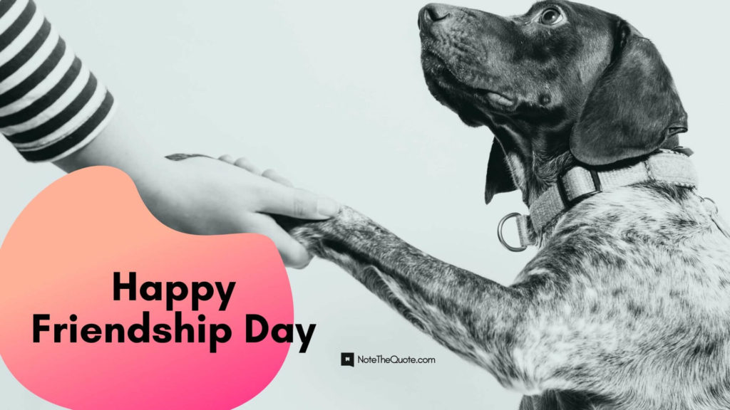 Happy Friendship Day : Wishes, Messages, Quotes, WhatsApp Status